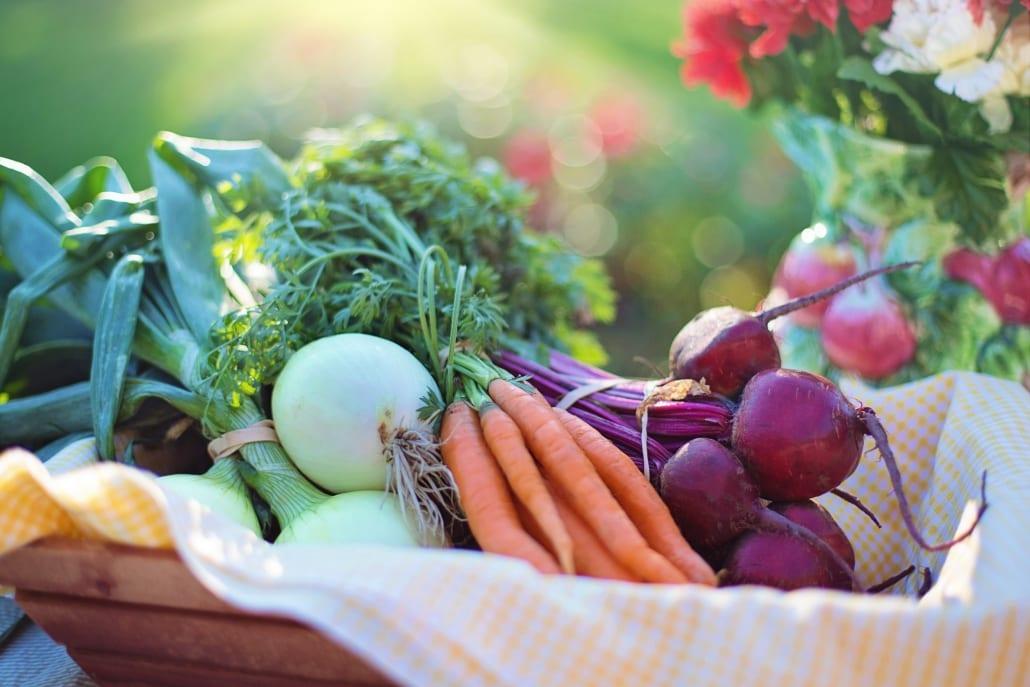groenten_en_fruit_verbouwen