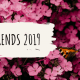 blog cover_ tuintrends 2019