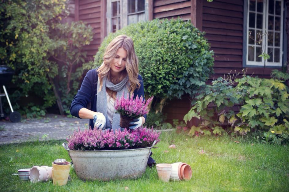 Houtbouw-Hiemstra-Twijzel-tuin-herfstklaar-maken